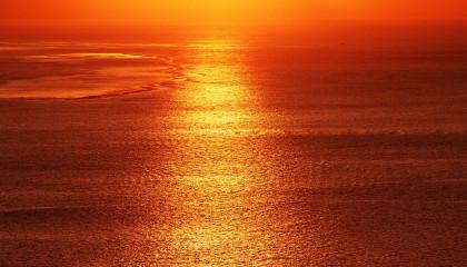 Краситель пищевой Солнечный закат Е110 <br /> Цена от 200 грн./кг